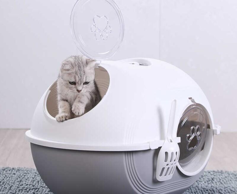 nhà vệ sinh cho mèo