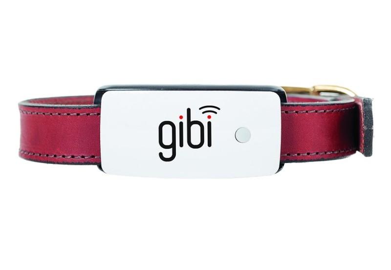 vong co GIBI 2nd Gen Pet GPS Tracker