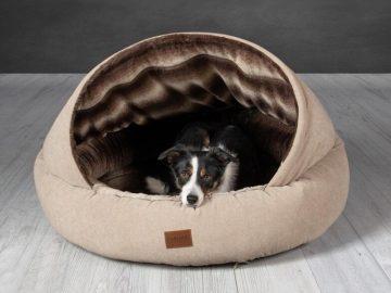 giường nệm cho chó