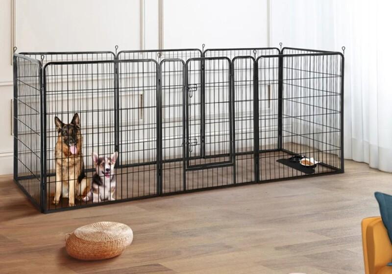 hàng rào quây cho chó